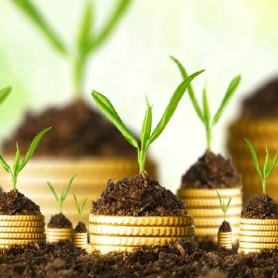 Инвестициите и човешкият капитал